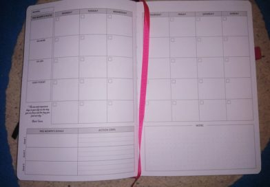 what day is today red planner